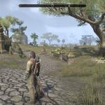 Elder Scrolls Online - Aldmeri Dominion Zone Landscape
